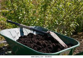 compost human waste